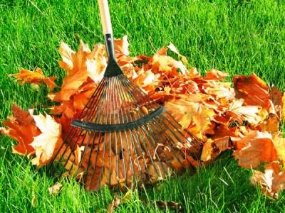 7 невідкладних справ в саду перед настанням зими