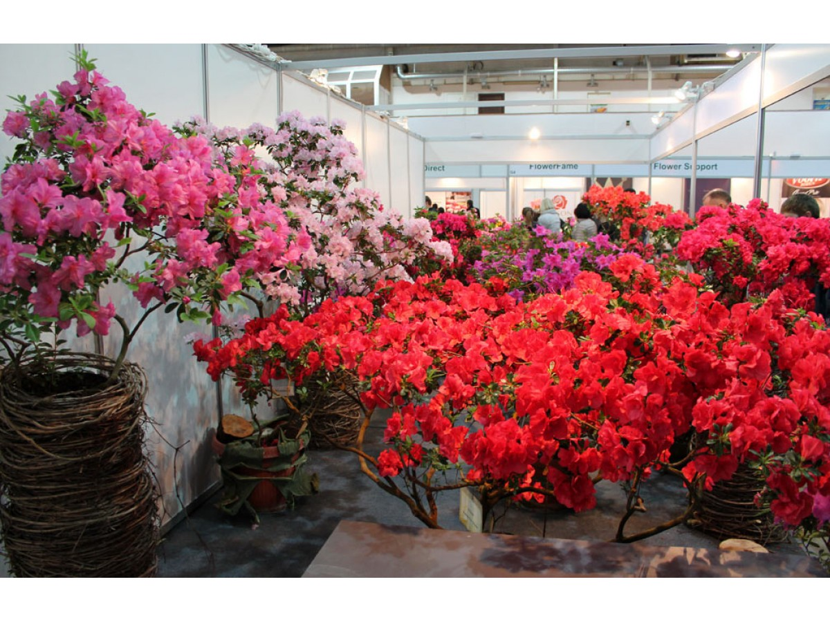 Выставка Flower Expo Ukraine 2017