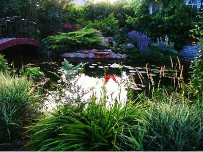 My favorite garden.Lilies, dahlias, tulips ...