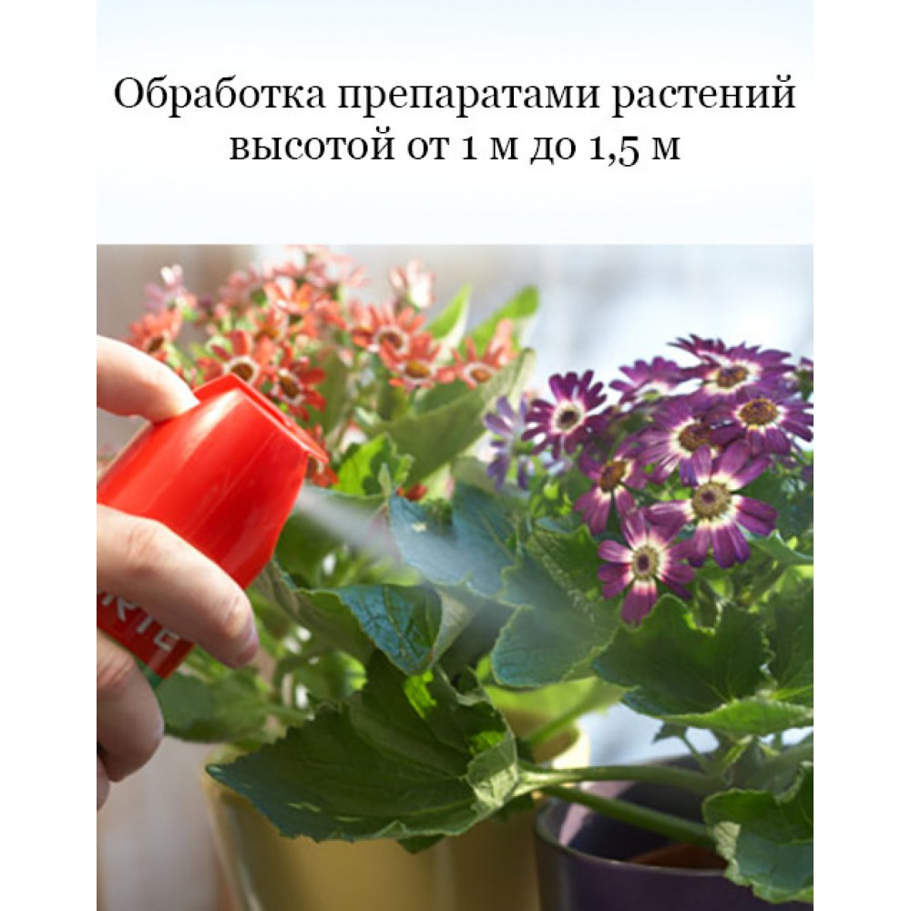 Treatment with plant preparations from 1m to 1.5m