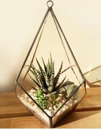 "Florarium-pyramid ""Edge of reality"""