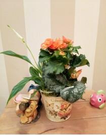 """Flower arrangement """"Fantasies of a summer resident"""""""