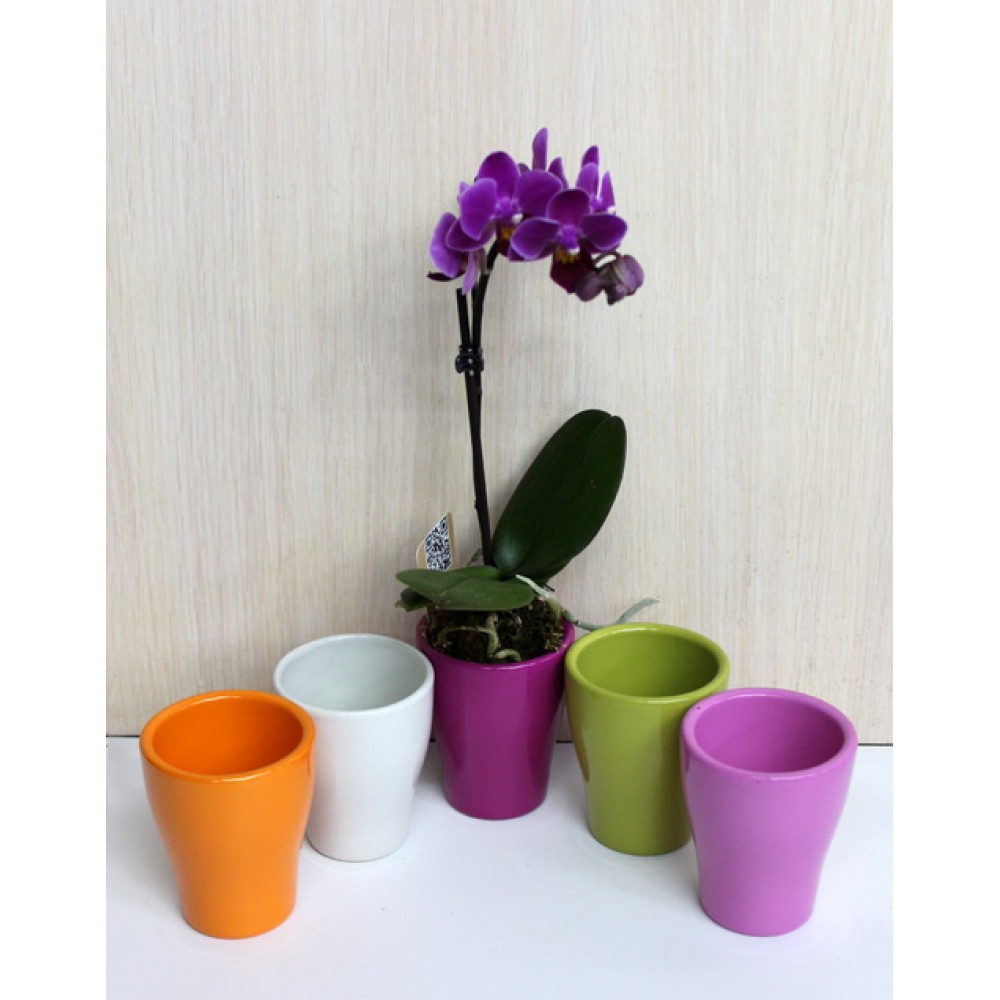Pot for orchids, ceramics