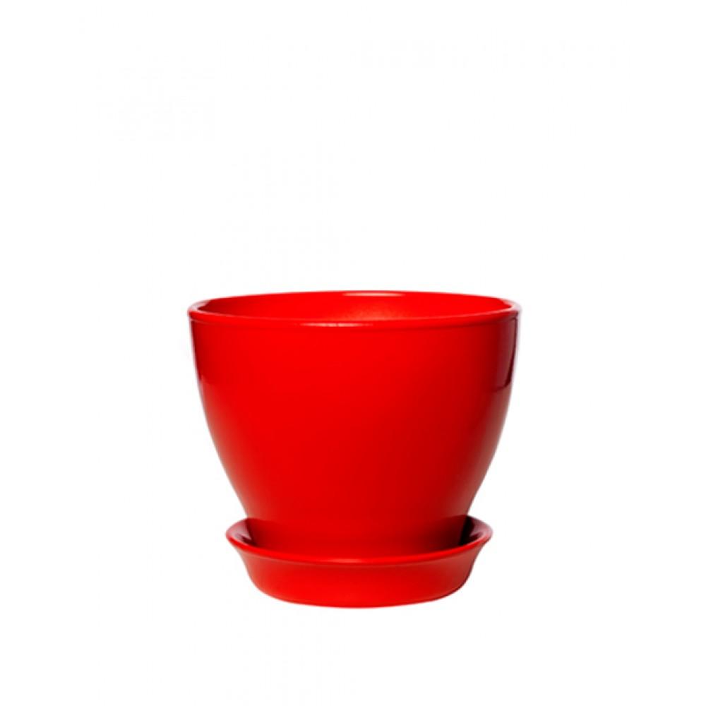 Pot Ksenia gloss (mix) 0,5l